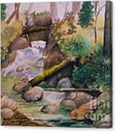The Rapids Canvas Print