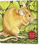 The Raspberry Mouse Canvas Print
