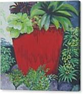 The Red Pot Canvas Print