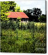 The Red Roof Canvas Print