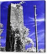 the Remnant CIR Canvas Print