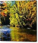 The Rifle River At Highbanks Base Canvas Print