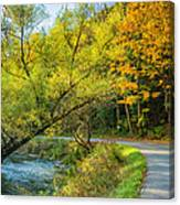 The River Road Curve Canvas Print