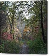 The Road Ahead No.2 Canvas Print