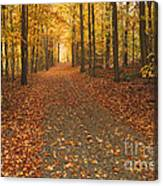 The Road North Canvas Print