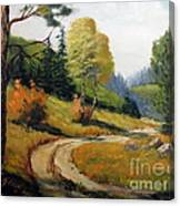 The Road Not Taken Canvas Print