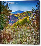 The Road To Cataloochee On A Frosty Fall Morning Canvas Print