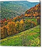 The Road To Glady Wv Canvas Print