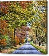 The Road To The Fall Canvas Print