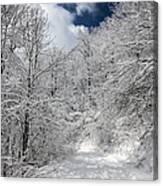 The Road To Winter Wonderland Canvas Print