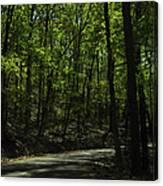 The Roads Of Alabama Canvas Print