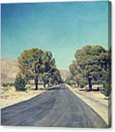 The Roads We Travel Canvas Print
