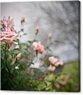 The Rose Garden Canvas Print