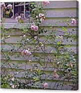 The Rose Shed Canvas Print