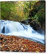 The Rushing Waterfall Canvas Print
