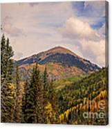 The San Juan National Forest Canvas Print