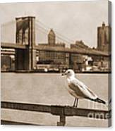 The Seagull Of The Brooklyn Bridge Vintage Look Canvas Print