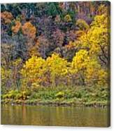 The Season Of Yellow Leaves Canvas Print