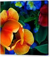 The Secret Life Of Tulips Canvas Print
