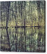 The Sentient Forest Canvas Print