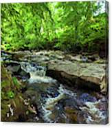 The Shankhill River Shortly Canvas Print