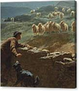 The Sheepstealer Canvas Print