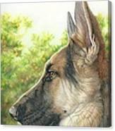 The Shepherd Watching Canvas Print