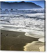 The Shore Canvas Print