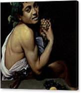 The Sick Bacchus, 1591  Canvas Print