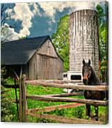 The Silo Horse Canvas Print