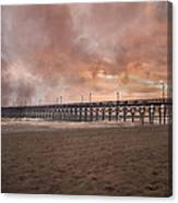 The Simple Purity Of Living Canvas Print