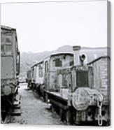 The Steam Train Canvas Print
