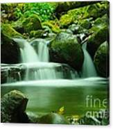 The Small Water Canvas Print