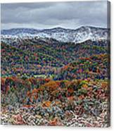 The Snow Began To Fall Canvas Print