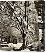 The Snow Tree - Sepia Antique Look Canvas Print