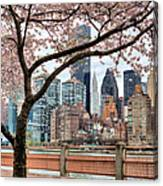 The Spring Skyline Canvas Print