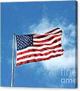 The Stars And Stripes Canvas Print