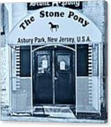 The Stone Pony Cool Canvas Print