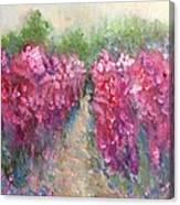 The Sumac Trail Canvas Print
