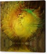 The Sun Faces Canvas Print