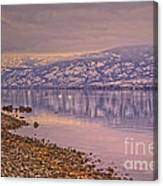 The Swans On Winter Solstice Canvas Print