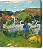The Swineherd Canvas Print
