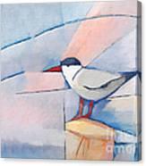 The Tern Canvas Print