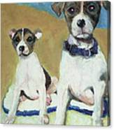 The Terriers Canvas Print