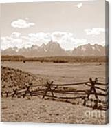 The Tetons In Sepia Canvas Print
