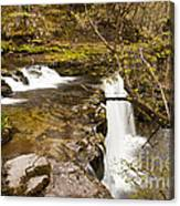 The Top Of The Falls Canvas Print