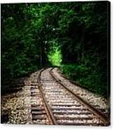 The Tracks Through The Woods Canvas Print