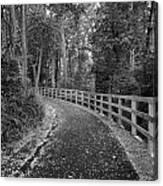 The Trail Canvas Print