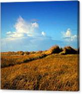 The Trail Through The Grass Canvas Print