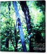 The Tree Spirits Canvas Print
